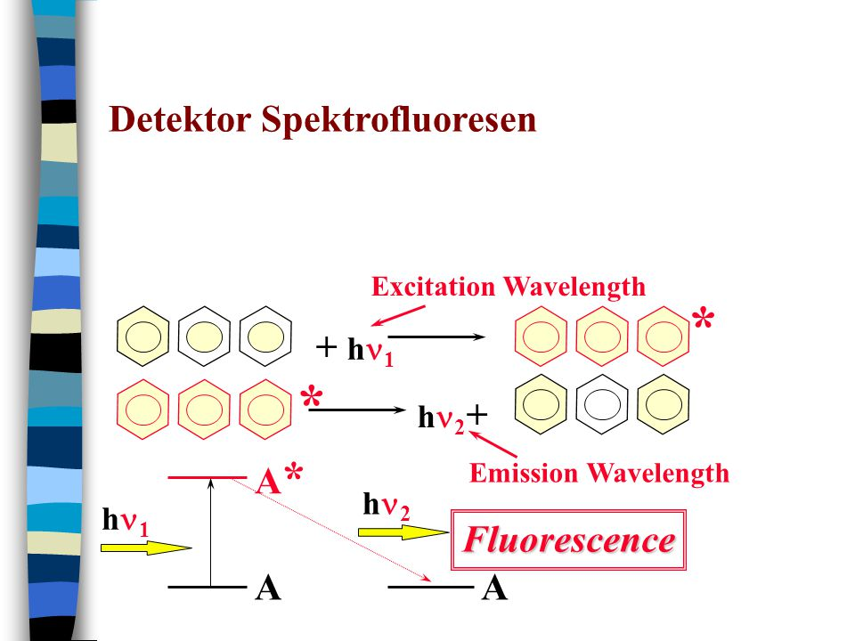 Detektor Spektrofluoresen + h 1 h 2 + * A A*A* A h 1 h 2 Excitation Wavelength Emission Wavelength Fluorescence *