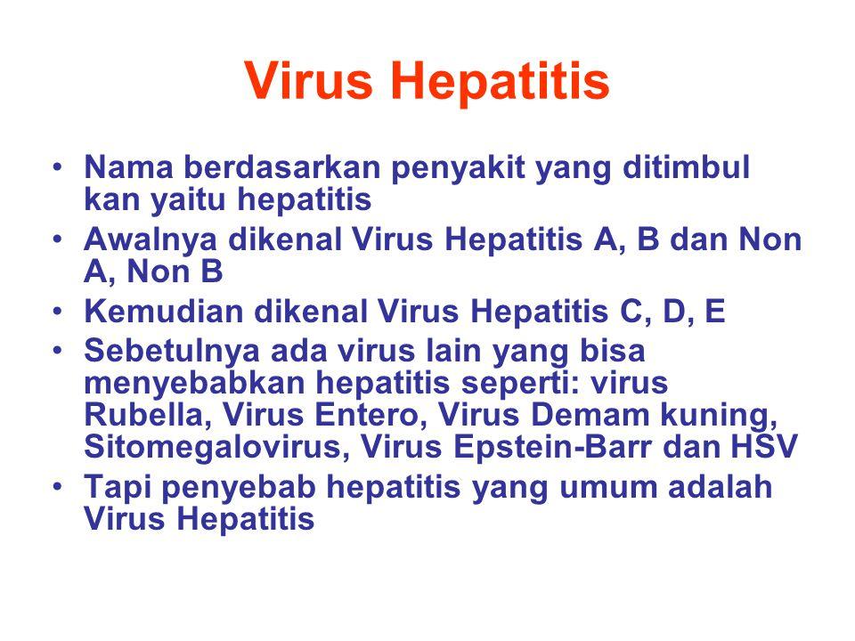 Virus Hepatitis Nama berdasarkan penyakit yang ditimbul kan yaitu hepatitis Awalnya dikenal Virus Hepatitis A, B dan Non A, Non B Kemudian dikenal Vir