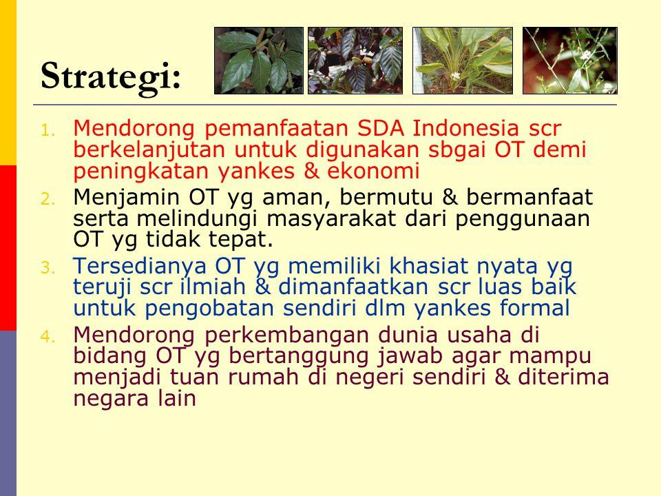 Landasan kebijakan (penjabaran prinsip SKN) 1.