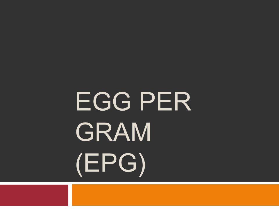 EGG PER GRAM (EPG)