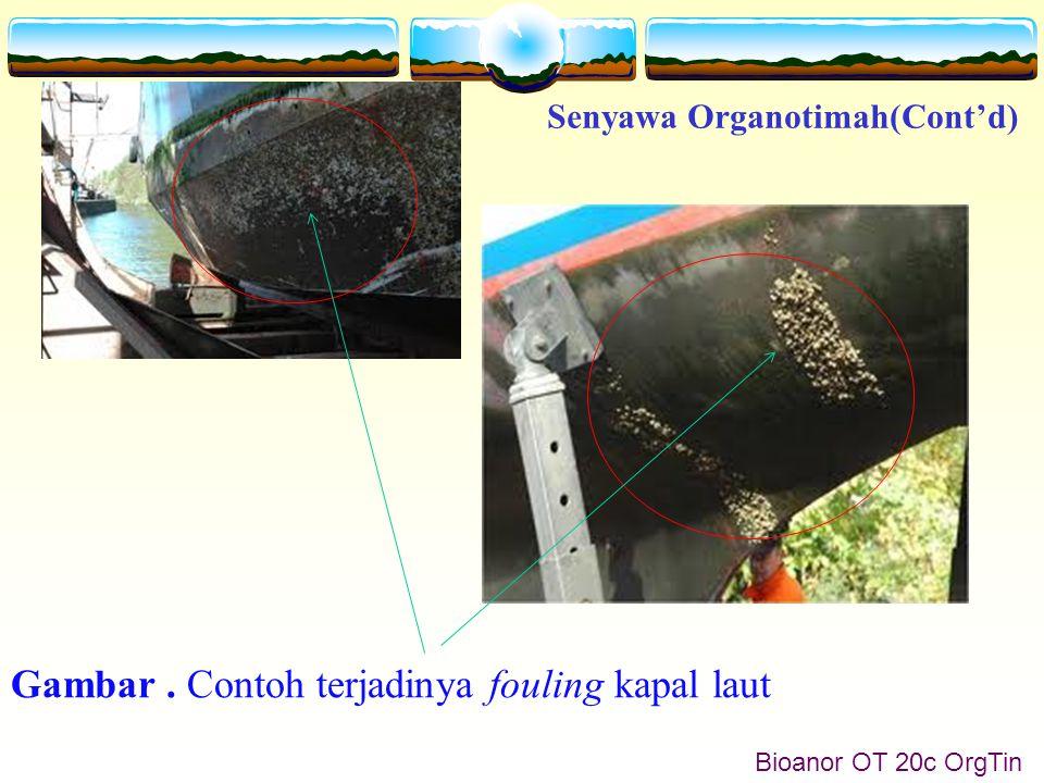Senyawa Organotimah(Cont'd) Bioanor OT 20c OrgTin Gambar. Contoh terjadinya fouling kapal laut