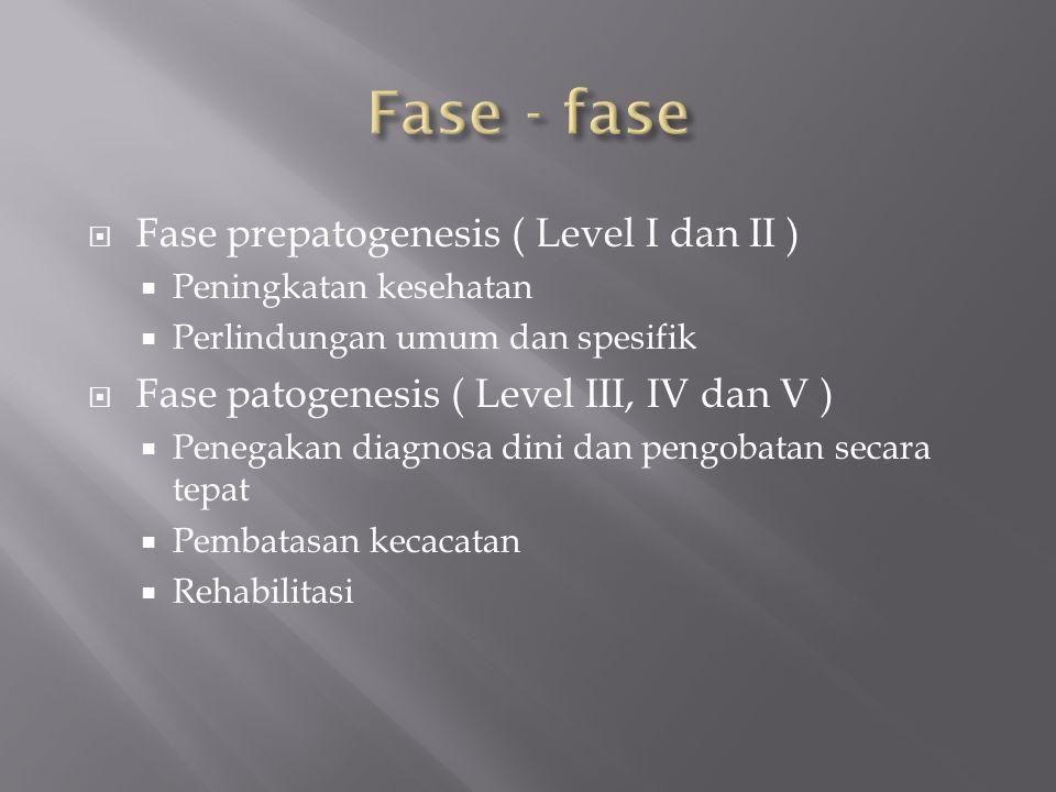  Fase prepatogenesis ( Level I dan II )  Peningkatan kesehatan  Perlindungan umum dan spesifik  Fase patogenesis ( Level III, IV dan V )  Penegakan diagnosa dini dan pengobatan secara tepat  Pembatasan kecacatan  Rehabilitasi