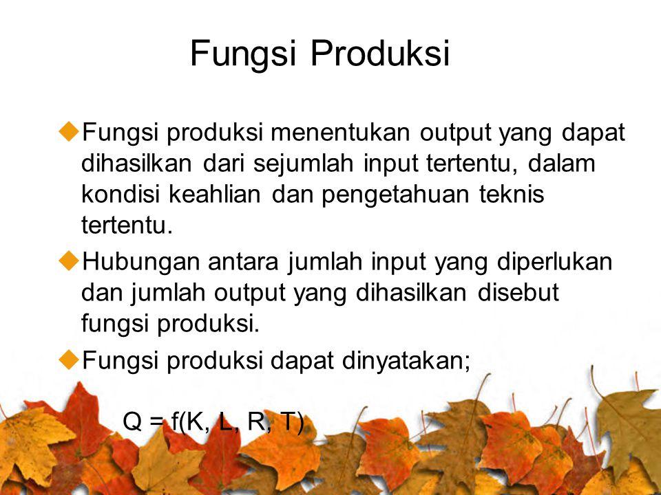 Fungsi Produksi uFungsi produksi menentukan output yang dapat dihasilkan dari sejumlah input tertentu, dalam kondisi keahlian dan pengetahuan teknis t