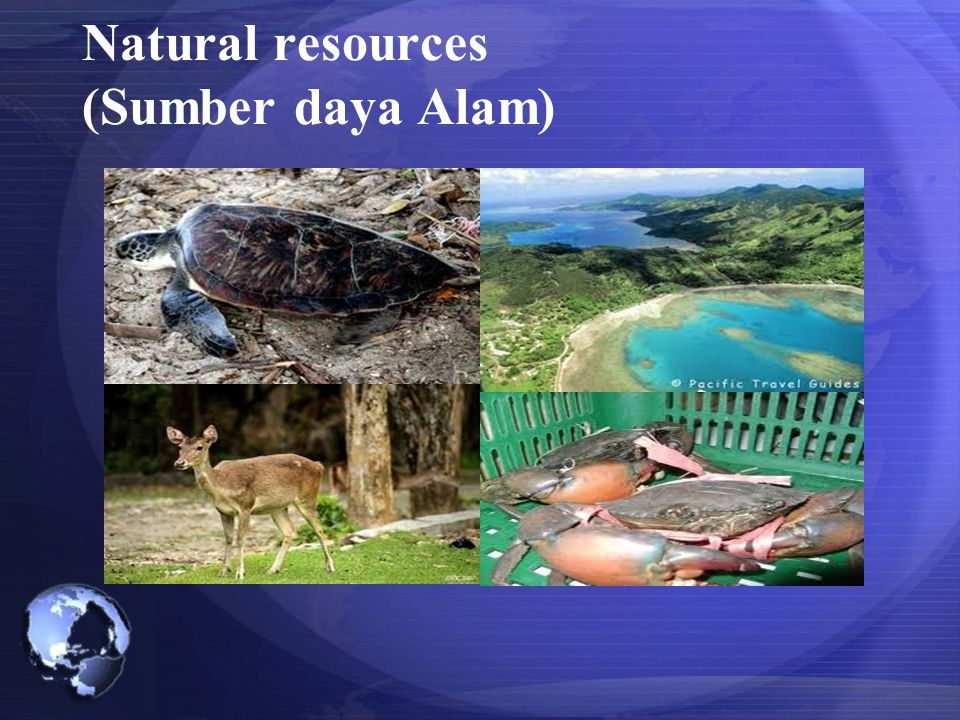 Natural resources (Sumber daya Alam)
