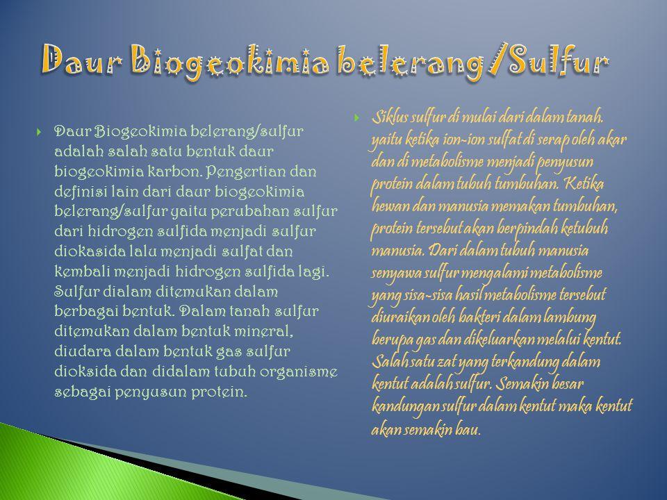  Daur Biogeokimia belerang/sulfur adalah salah satu bentuk daur biogeokimia karbon.