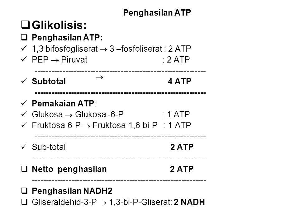 Penghasilan ATP  Glikolisis:  Penghasilan ATP: 1,3 bifosfogliserat  3 –fosfoliserat : 2 ATP PEP  Piruvat : 2 ATP ---------------------------------