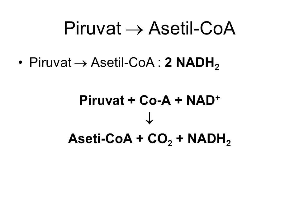Piruvat  Asetil-CoA Piruvat  Asetil-CoA : 2 NADH 2 Piruvat + Co-A + NAD +  Aseti-CoA + CO 2 + NADH 2