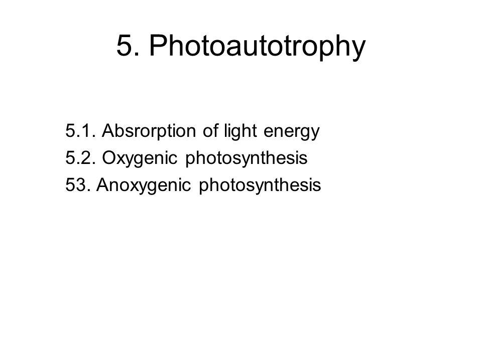 5. Photoautotrophy 5.1. Absrorption of light energy 5.2. Oxygenic photosynthesis 53. Anoxygenic photosynthesis