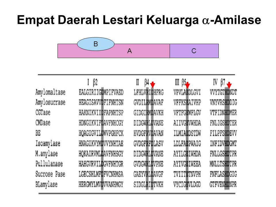 Empat Daerah Lestari Keluarga  -Amilase AC B