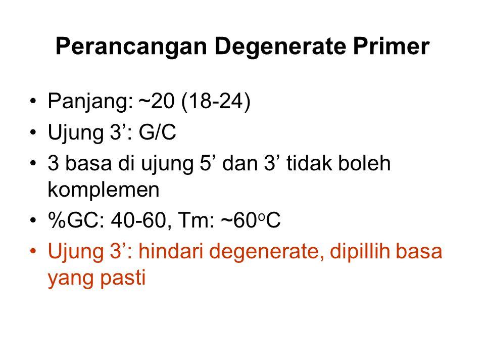 Perancangan Degenerate Primer Panjang: ~20 (18-24) Ujung 3': G/C 3 basa di ujung 5' dan 3' tidak boleh komplemen %GC: 40-60, Tm: ~60 o C Ujung 3': hin