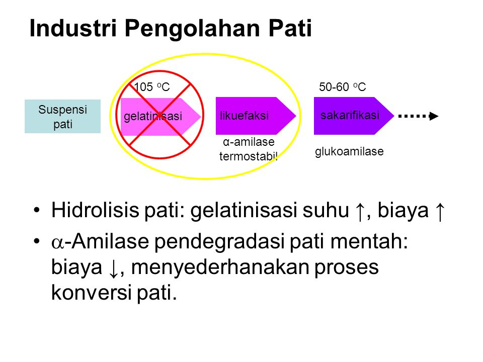 Hidrolisis pati: gelatinisasi suhu ↑, biaya ↑  -Amilase pendegradasi pati mentah: biaya ↓, menyederhanakan proses konversi pati. Suspensi pati sakari