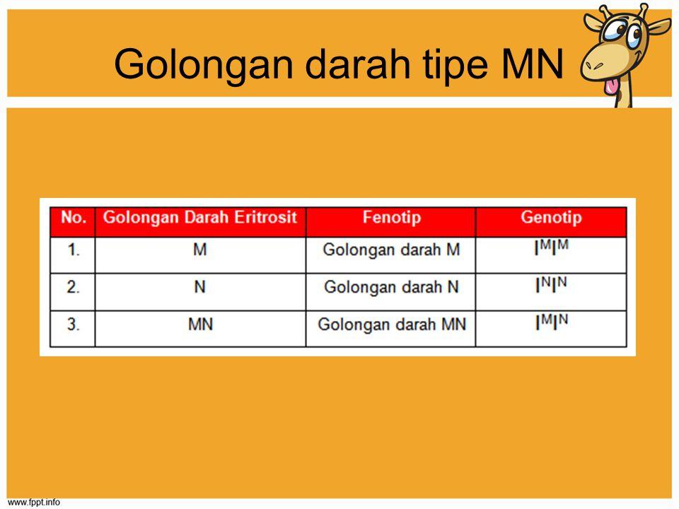 Golongan darah tipe MN
