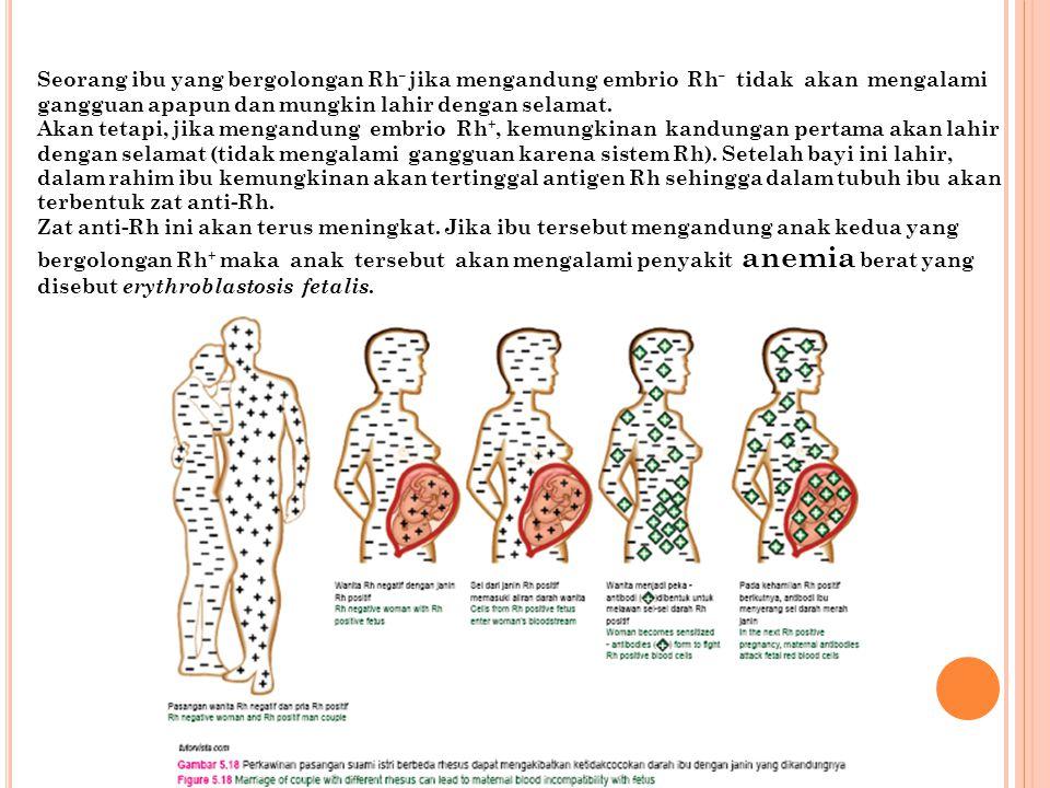 Seorang ibu yang bergolongan Rh – jika mengandung embrio Rh – tidak akan mengalami gangguan apapun dan mungkin lahir dengan selamat. Akan tetapi, jika