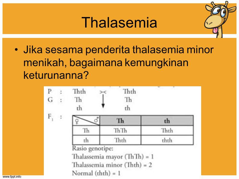 Thalasemia Jika sesama penderita thalasemia minor menikah, bagaimana kemungkinan keturunanna?