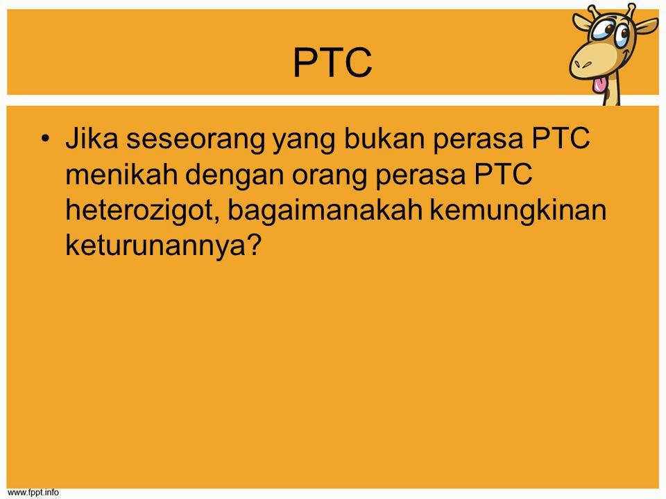 PTC Jika seseorang yang bukan perasa PTC menikah dengan orang perasa PTC heterozigot, bagaimanakah kemungkinan keturunannya?