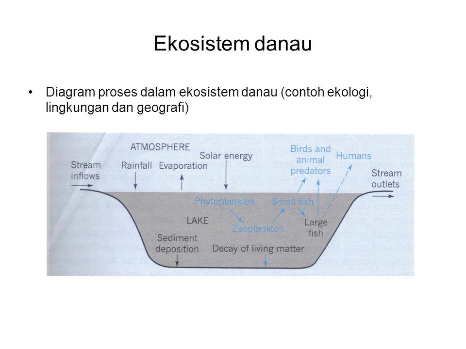 Ekosistem danau Diagram proses dalam ekosistem danau (contoh ekologi, lingkungan dan geografi)