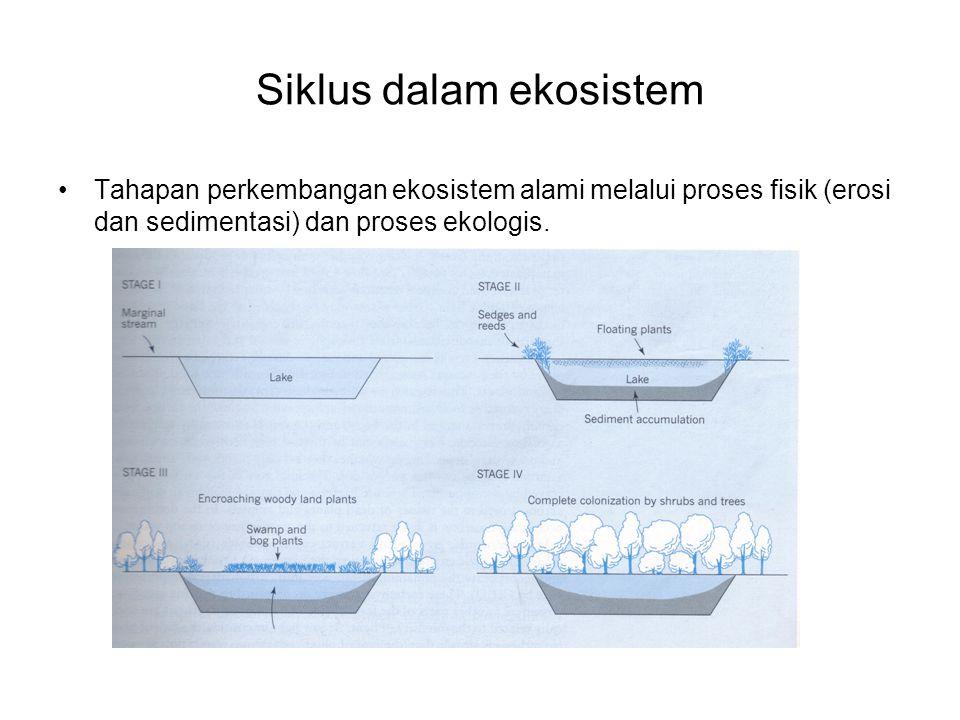 Siklus dalam ekosistem Tahapan perkembangan ekosistem alami melalui proses fisik (erosi dan sedimentasi) dan proses ekologis.