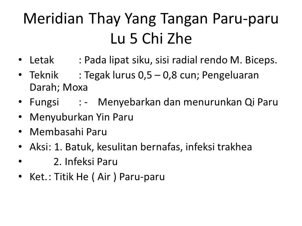 Meridian Thay Yang Tangan Paru-paru Lu 5 Chi Zhe Letak: Pada lipat siku, sisi radial rendo M.