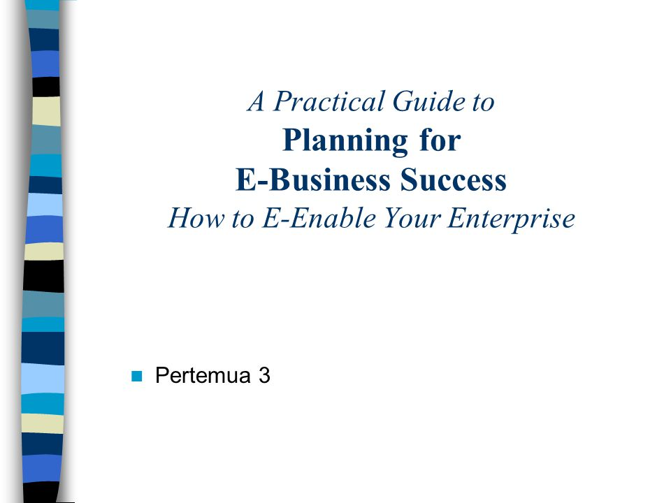A Practical Guide to Planning for E-Business Success How to E-Enable Your Enterprise Pertemua 3