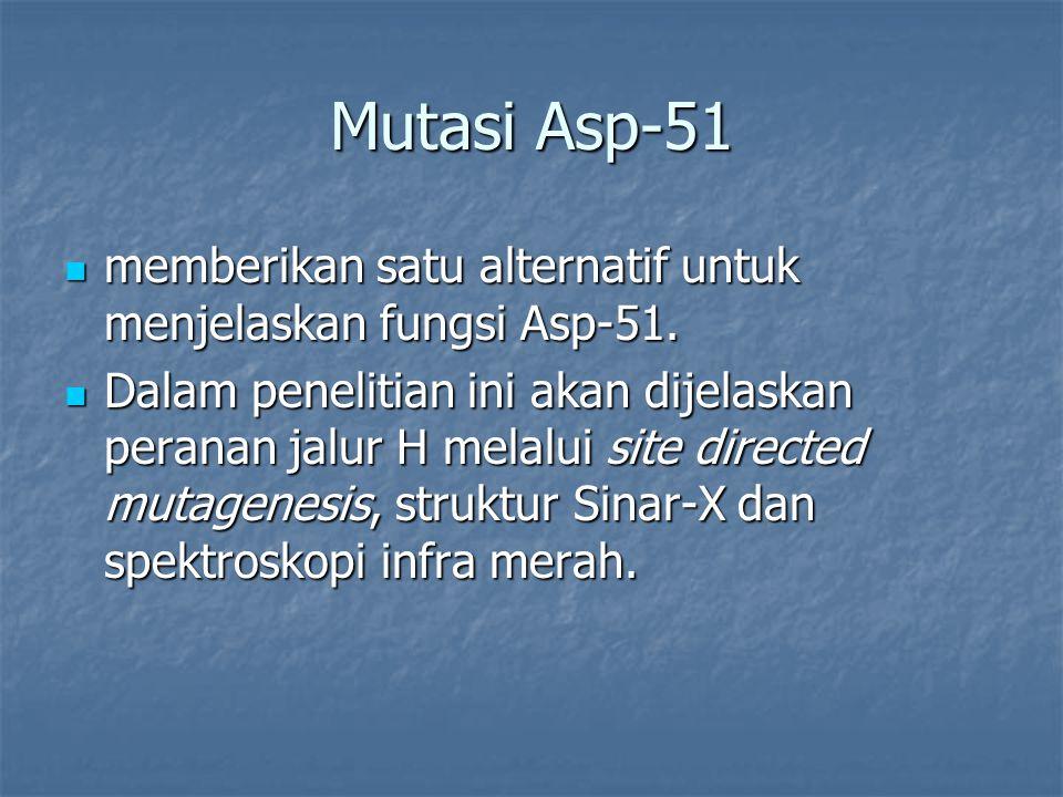 Mutasi Asp-51 memberikan satu alternatif untuk menjelaskan fungsi Asp-51. memberikan satu alternatif untuk menjelaskan fungsi Asp-51. Dalam penelitian