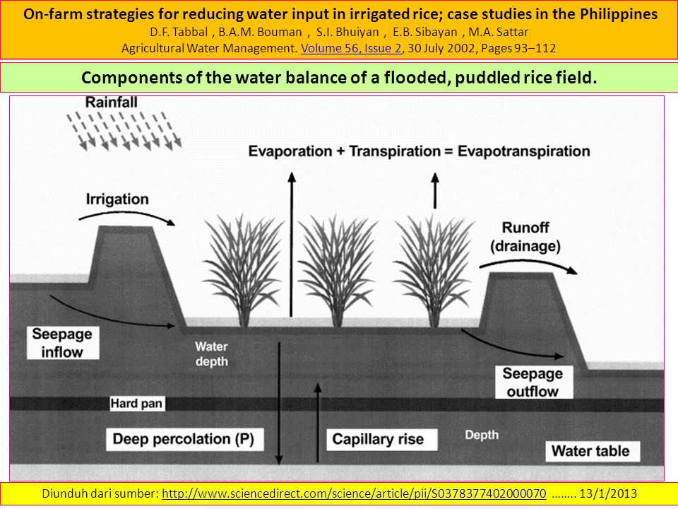 On-farm strategies for reducing water input in irrigated rice; case studies in the Philippines D.F.