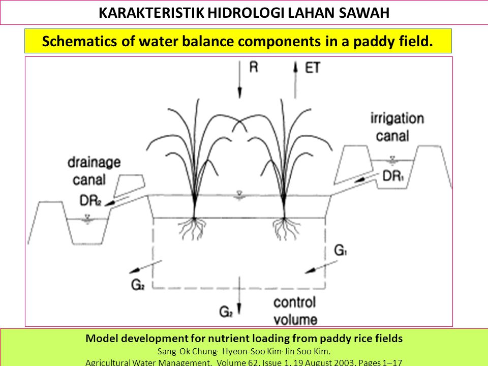 KARAKTERISTIK HIDROLOGI LAHAN SAWAH Schematics of water balance components in a paddy field.