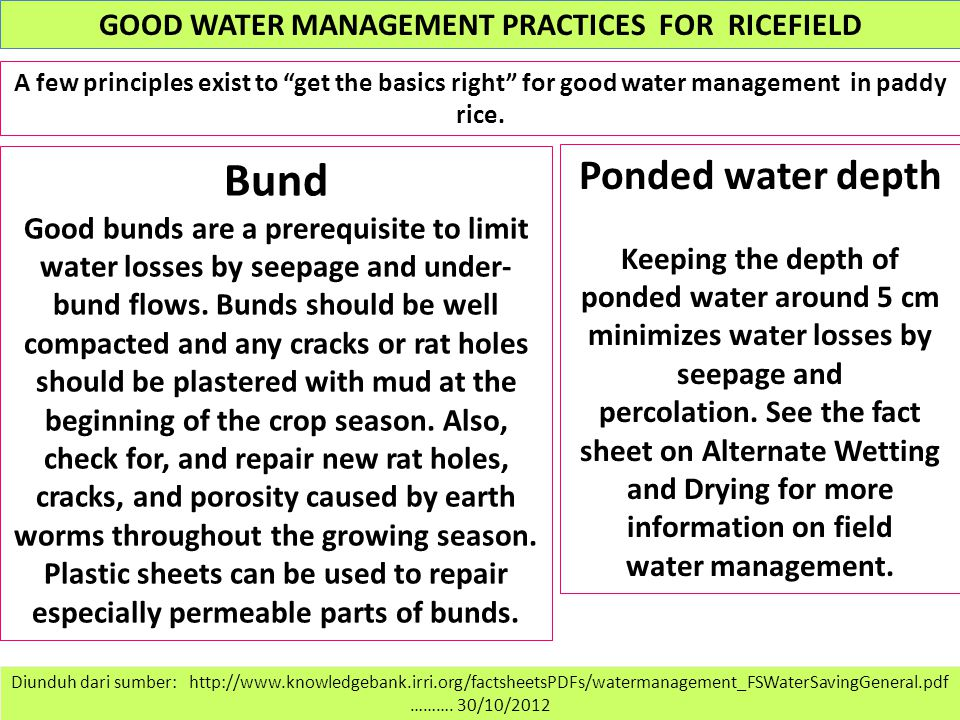 GOOD WATER MANAGEMENT PRACTICES FOR RICEFIELD Diunduh dari sumber: http://www.knowledgebank.irri.org/factsheetsPDFs/watermanagement_FSWaterSavingGeneral.pdf ……….