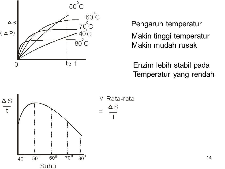 14 Pengaruh temperatur Makin tinggi temperatur Makin mudah rusak Enzim lebih stabil pada Temperatur yang rendah