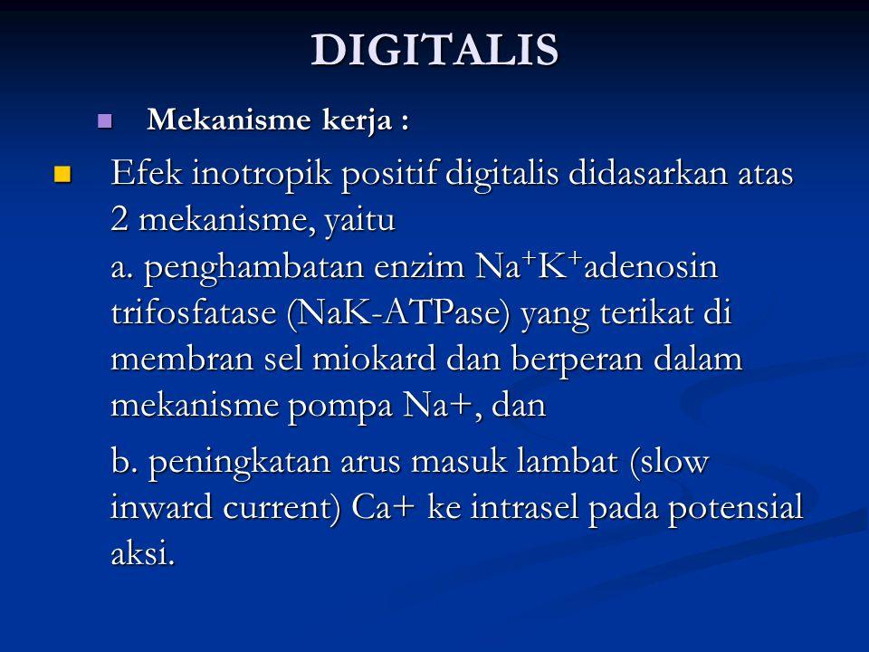 DIGITALIS Mekanisme kerja : Mekanisme kerja : Efek inotropik positif digitalis didasarkan atas 2 mekanisme, yaitu a. penghambatan enzim Na + K + adeno
