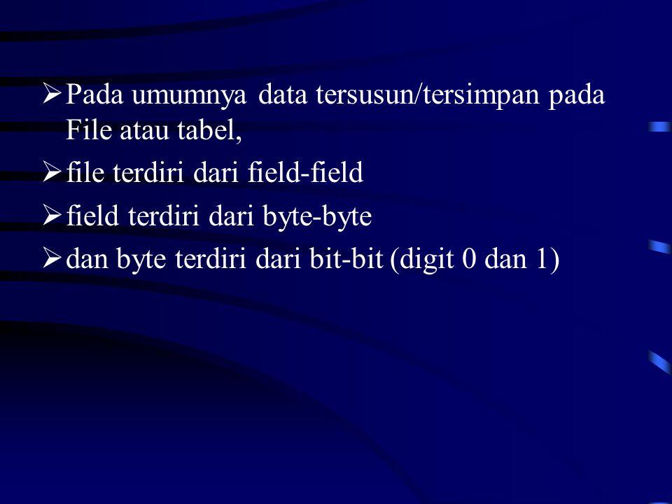  Pada umumnya data tersusun/tersimpan pada File atau tabel,  file terdiri dari field-field  field terdiri dari byte-byte  dan byte terdiri dari bit-bit (digit 0 dan 1)