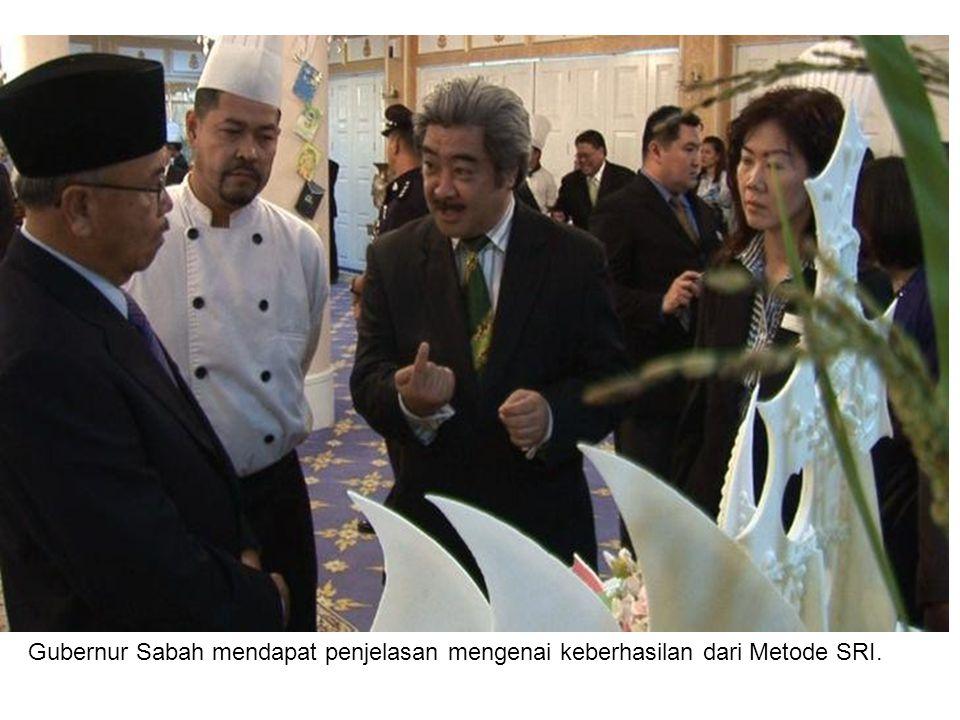Gubernur Sabah mendapat penjelasan mengenai keberhasilan dari Metode SRI.