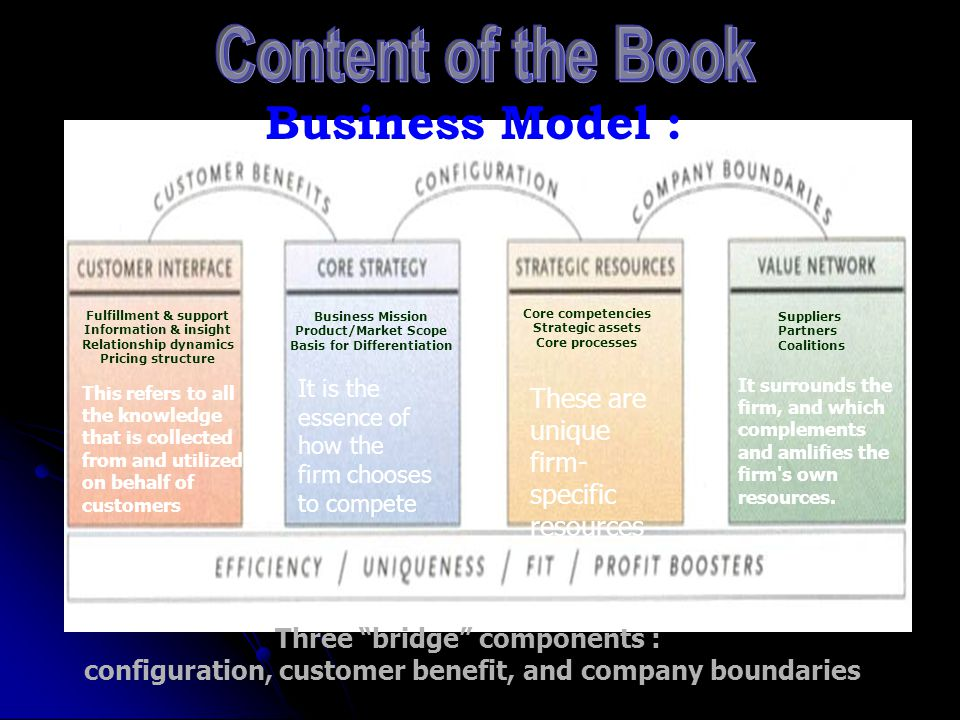 Content of the Book (2): What is Business Concept Innovation? Business Mission Product/Market Scope Basis for Differentiation Core competencies Strate