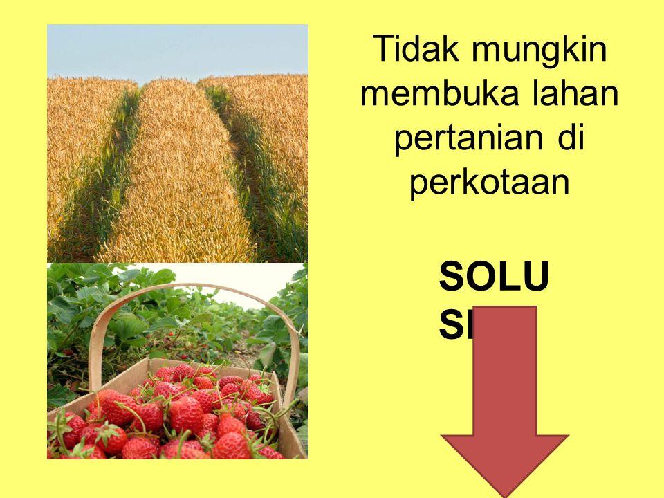 Tidak mungkin membuka lahan pertanian di perkotaan SOLU SI