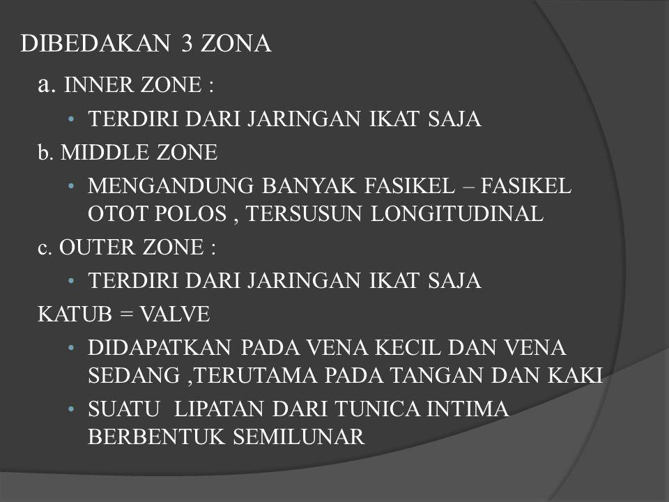 DIBEDAKAN 3 ZONA a. INNER ZONE : TERDIRI DARI JARINGAN IKAT SAJA b. MIDDLE ZONE MENGANDUNG BANYAK FASIKEL – FASIKEL OTOT POLOS, TERSUSUN LONGITUDINAL