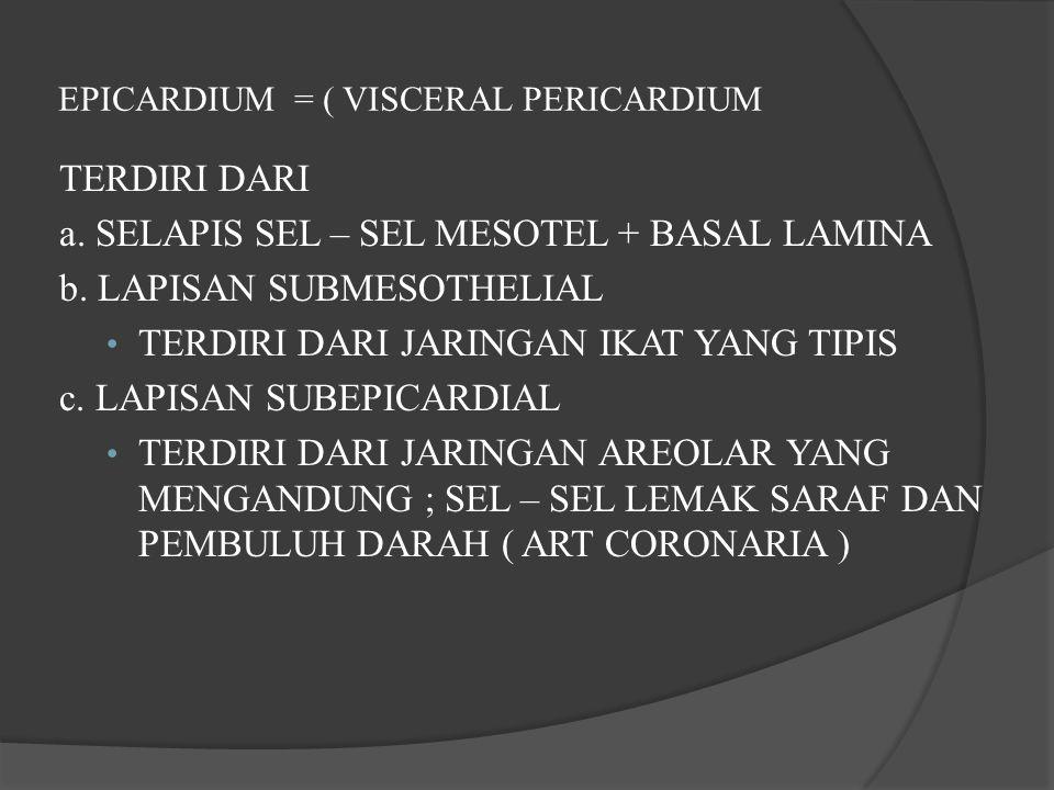EPICARDIUM = ( VISCERAL PERICARDIUM TERDIRI DARI a.