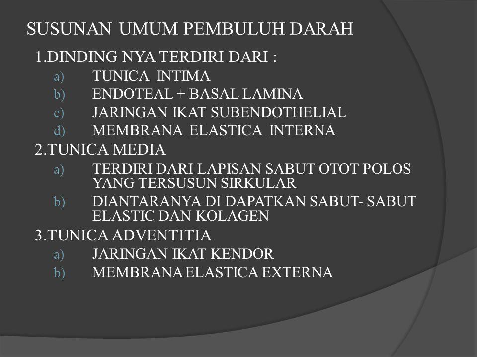 SUSUNAN UMUM PEMBULUH DARAH 1.DINDING NYA TERDIRI DARI : a) TUNICA INTIMA b) ENDOTEAL + BASAL LAMINA c) JARINGAN IKAT SUBENDOTHELIAL d) MEMBRANA ELASTICA INTERNA 2.TUNICA MEDIA a) TERDIRI DARI LAPISAN SABUT OTOT POLOS YANG TERSUSUN SIRKULAR b) DIANTARANYA DI DAPATKAN SABUT- SABUT ELASTIC DAN KOLAGEN 3.TUNICA ADVENTITIA a) JARINGAN IKAT KENDOR b) MEMBRANA ELASTICA EXTERNA
