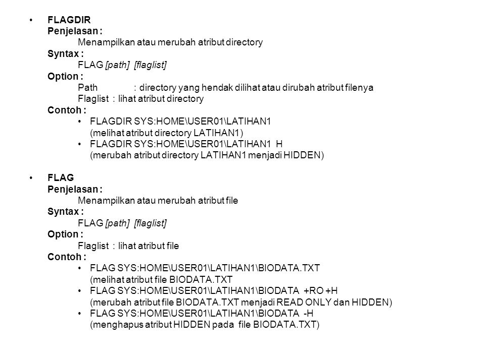 FLAGDIR Penjelasan : Menampilkan atau merubah atribut directory Syntax : FLAG [path] [flaglist] Option : Path : directory yang hendak dilihat atau dir