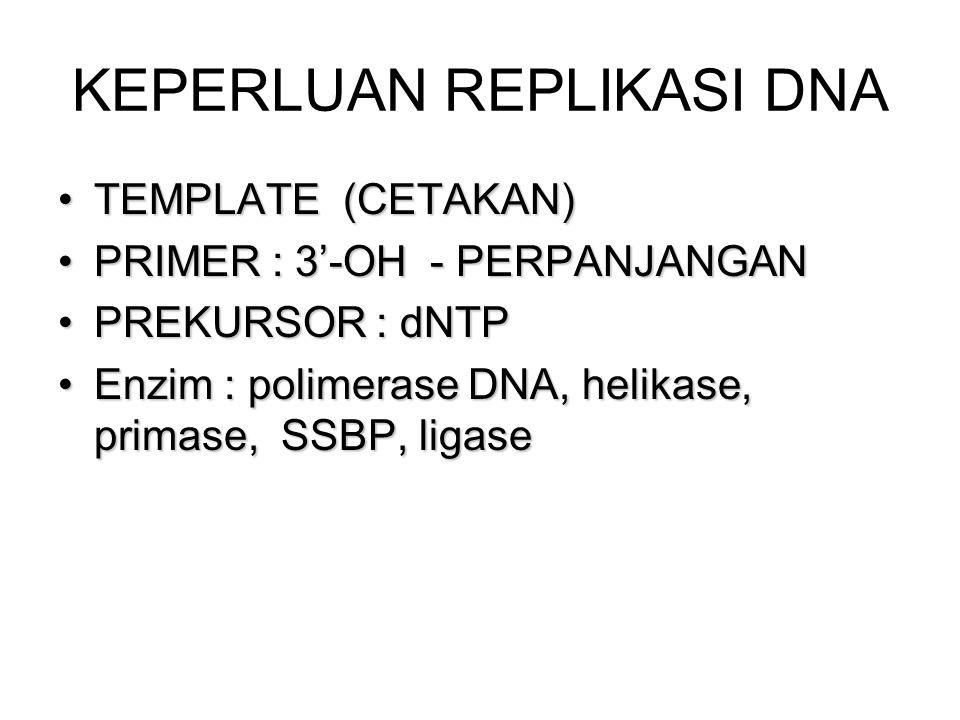 DNA ligase Ligation