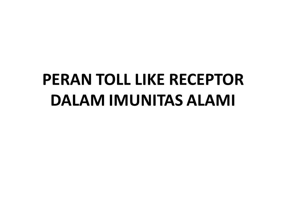 PERAN TOLL LIKE RECEPTOR DALAM IMUNITAS ALAMI