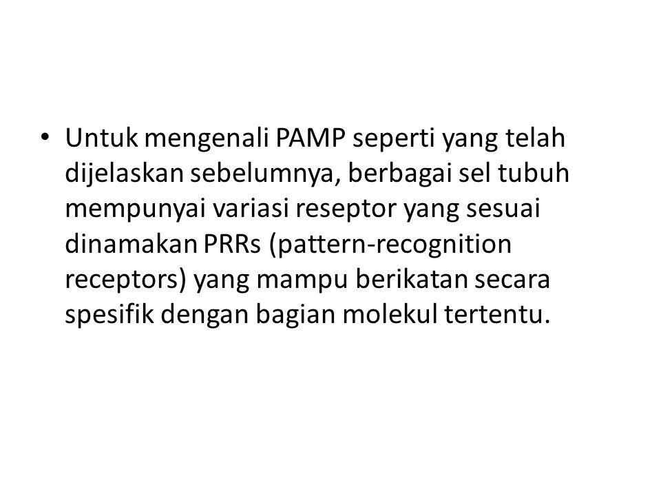 Untuk mengenali PAMP seperti yang telah dijelaskan sebelumnya, berbagai sel tubuh mempunyai variasi reseptor yang sesuai dinamakan PRRs (pattern-recognition receptors) yang mampu berikatan secara spesifik dengan bagian molekul tertentu.