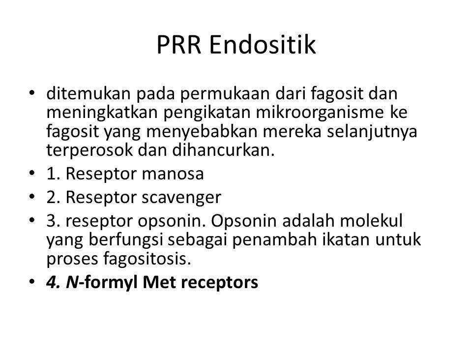 PRR Endositik ditemukan pada permukaan dari fagosit dan meningkatkan pengikatan mikroorganisme ke fagosit yang menyebabkan mereka selanjutnya terperos