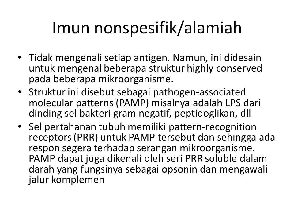Imun nonspesifik/alamiah Tidak mengenali setiap antigen. Namun, ini didesain untuk mengenal beberapa struktur highly conserved pada beberapa mikroorga