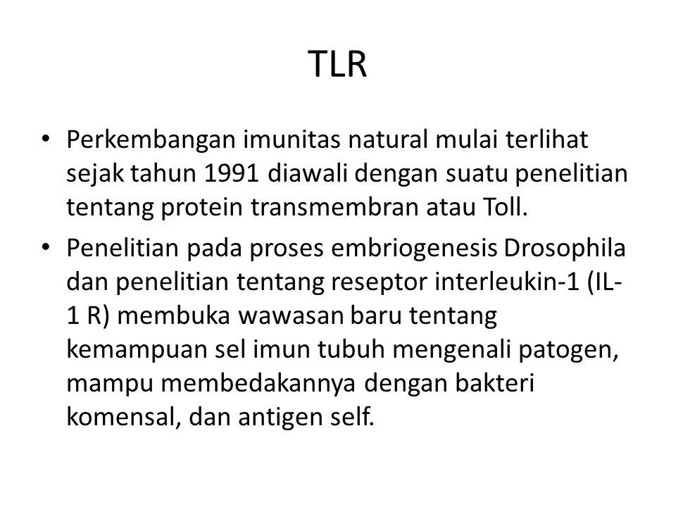 TLR Perkembangan imunitas natural mulai terlihat sejak tahun 1991 diawali dengan suatu penelitian tentang protein transmembran atau Toll. Penelitian p