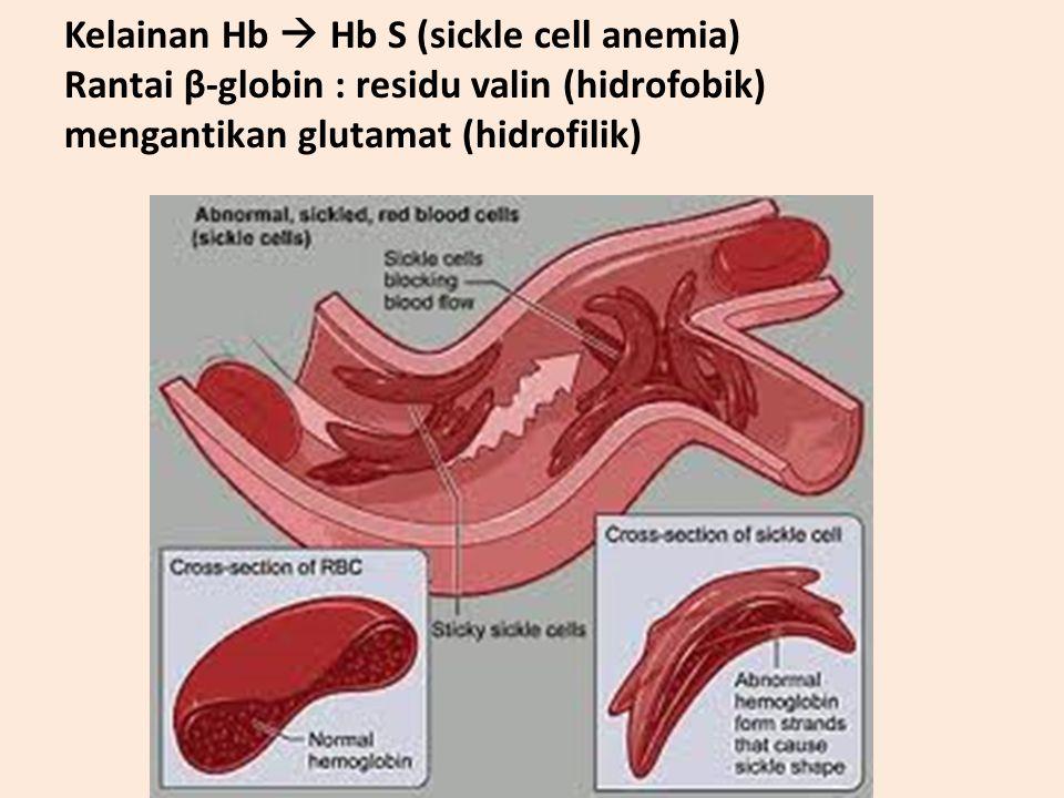 PROTEIN BIOREGULATOR (HORMON) Sebagian besar hormon adalah peptida Contoh hormon polipeptida : – ACTH – Angiotensin I, II – Gastrin – Insulin, glukago