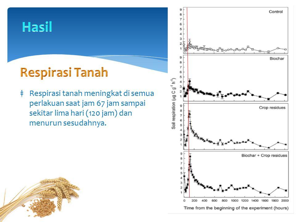 ‡Tanah dengan residu tanaman memiliki proporsi kehilangan C akibat respirasi tertinggi.