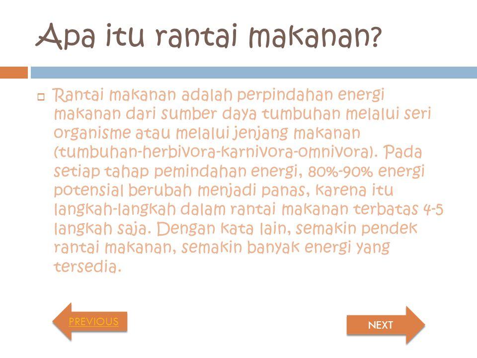 MENGENAL RANTAI MAKANAN Created by: Hayu Minangkani Putri CLICK HERE