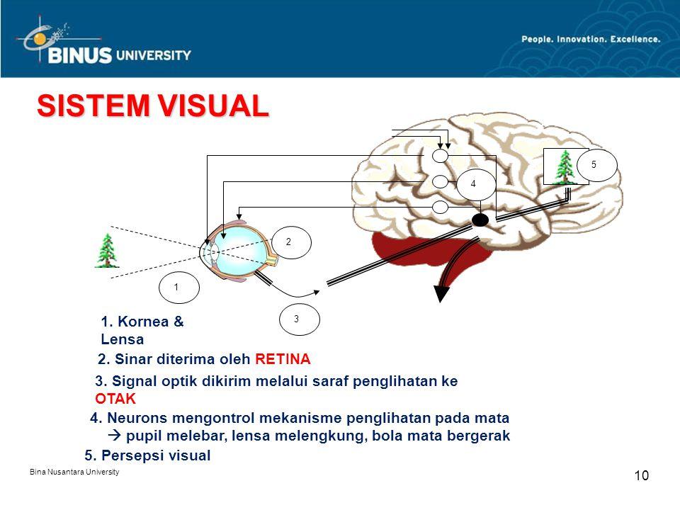 Bina Nusantara University 10 1 2 3 4 5 1. Kornea & Lensa 2.