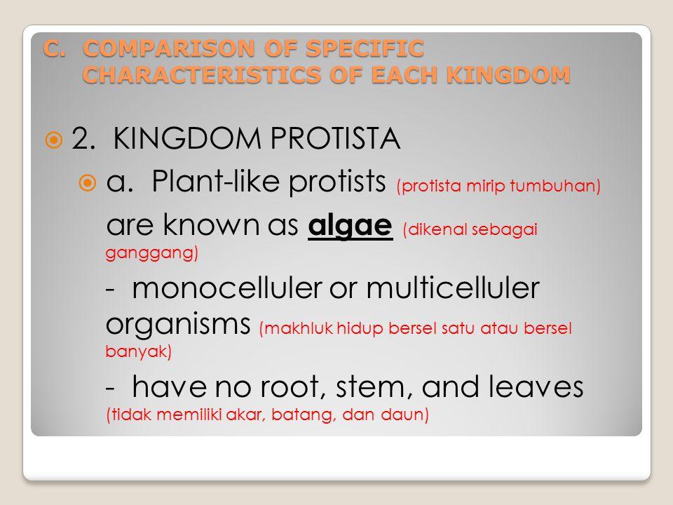 C.COMPARISON OF SPECIFIC CHARACTERISTICS OF EACH KINGDOM  2.