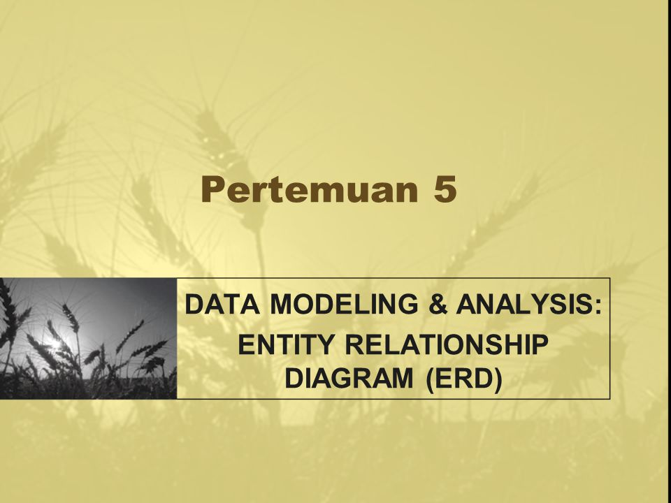 Pertemuan 5 DATA MODELING & ANALYSIS: ENTITY RELATIONSHIP DIAGRAM (ERD)