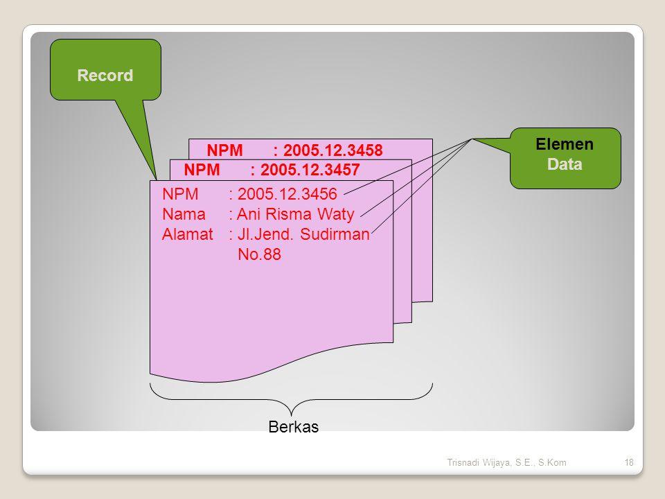 NPM: 2005.12.3456 Nama: Ani Risma Waty Alamat: Jl.Jend. Sudirman No.88 NPM: 2005.12.3457 NPM: 2005.12.3458 Record Elemen Data Berkas 18Trisnadi Wijaya